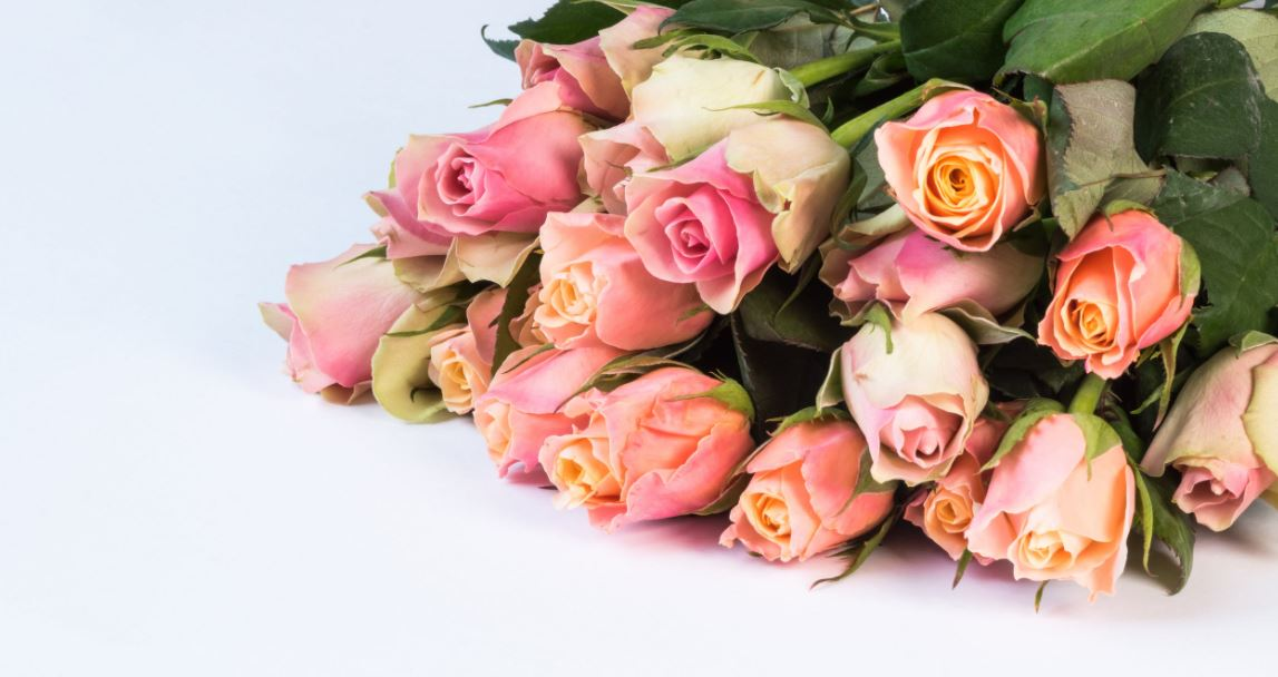Blumen online